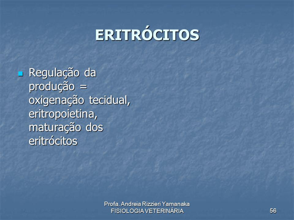 Profa. Andreia Rizzieri Yamanaka FISIOLOGIA VETERINÁRIA 56 ERITRÓCITOS Regulação da produção = oxigenação tecidual, eritropoietina, maturação dos erit