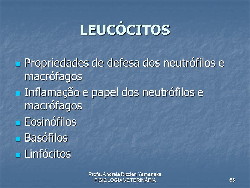 Profa. Andreia Rizzieri Yamanaka FISIOLOGIA VETERINÁRIA 63 LEUCÓCITOS Propriedades de defesa dos neutrófilos e macrófagos Propriedades de defesa dos n