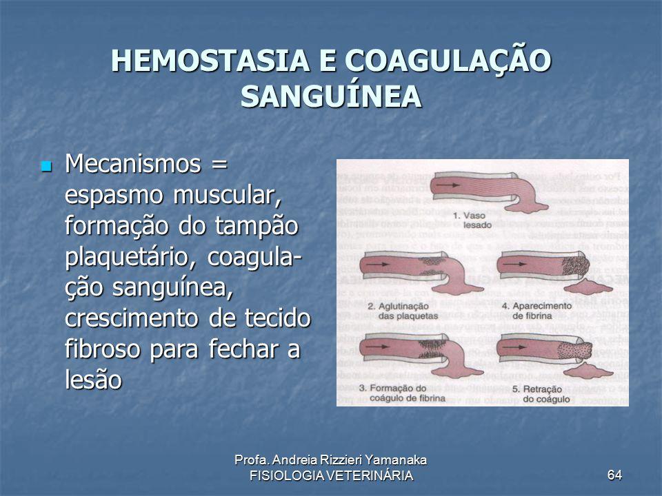 Profa. Andreia Rizzieri Yamanaka FISIOLOGIA VETERINÁRIA 64 HEMOSTASIA E COAGULAÇÃO SANGUÍNEA Mecanismos = espasmo muscular, formação do tampão plaquet
