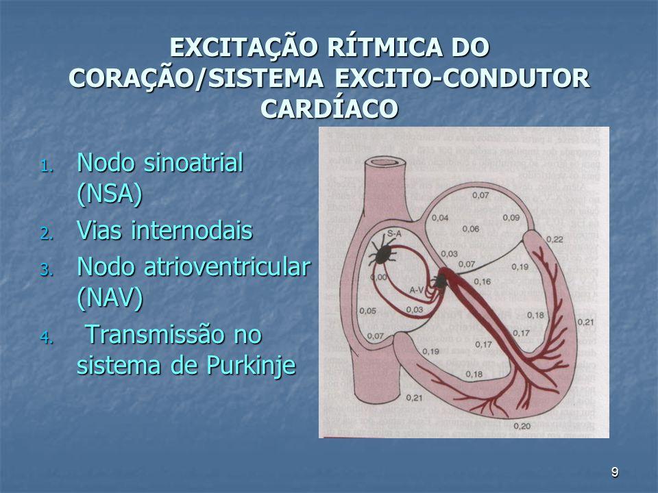 9 EXCITAÇÃO RÍTMICA DO CORAÇÃO/SISTEMA EXCITO-CONDUTOR CARDÍACO 1. Nodo sinoatrial (NSA) 2. Vias internodais 3. Nodo atrioventricular (NAV) 4. Transmi