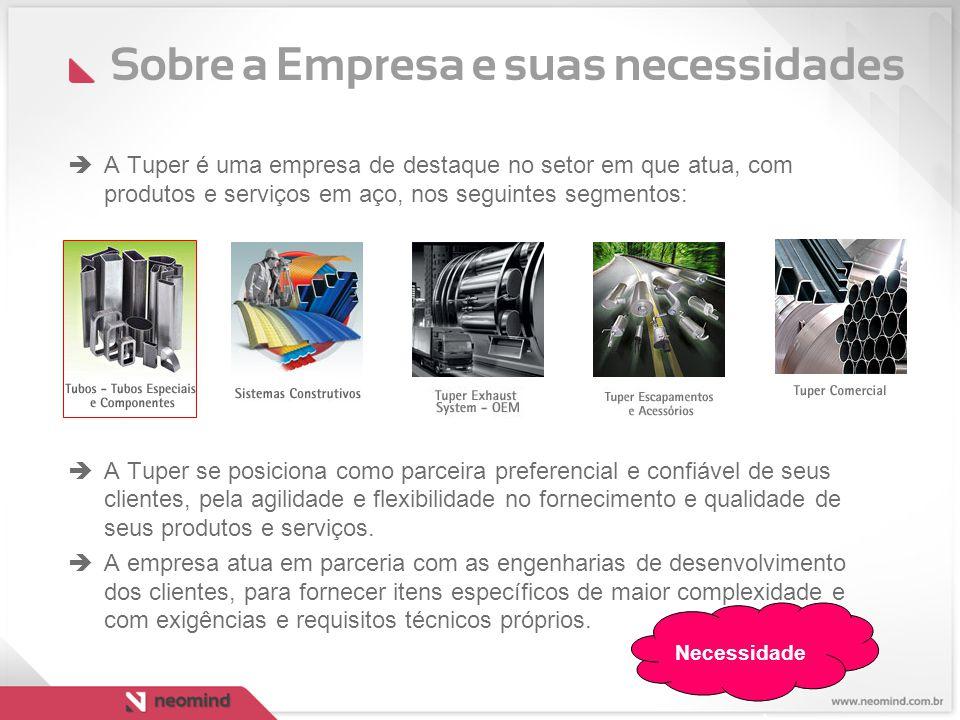 Sobre a Empresa e suas necessidades  A Tuper é uma empresa de destaque no setor em que atua, com produtos e serviços em aço, nos seguintes segmentos:
