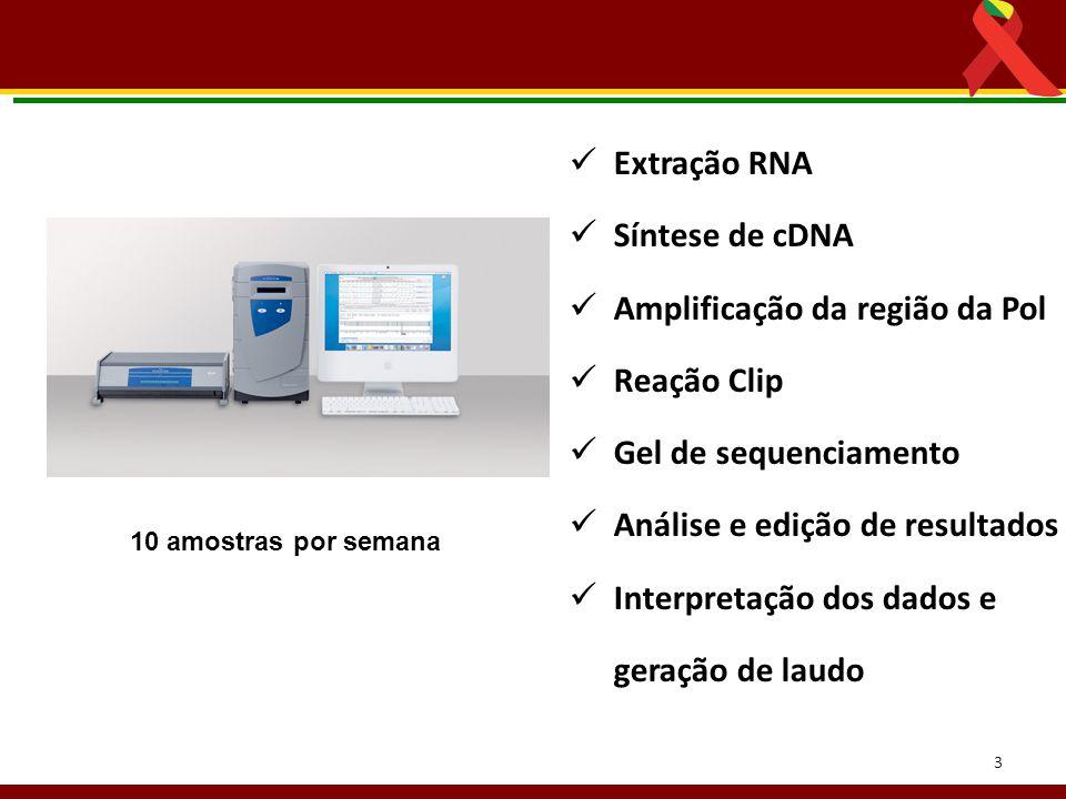 3 Extração RNA Síntese de cDNA Amplificação da região da Pol Reação Clip Gel de sequenciamento Análise e edição de resultados Interpretação dos dados