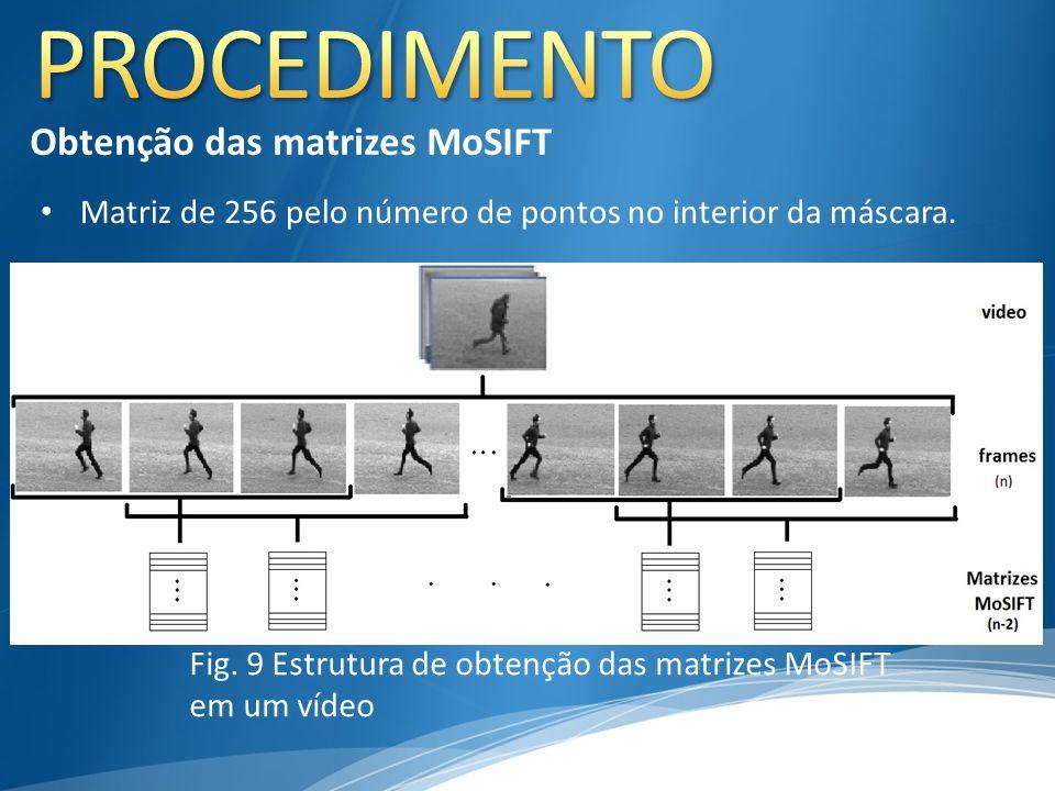 Fig. 9 Estrutura de obtenção das matrizes MoSIFT em um vídeo Obtenção das matrizes MoSIFT Matriz de 256 pelo número de pontos no interior da máscara.