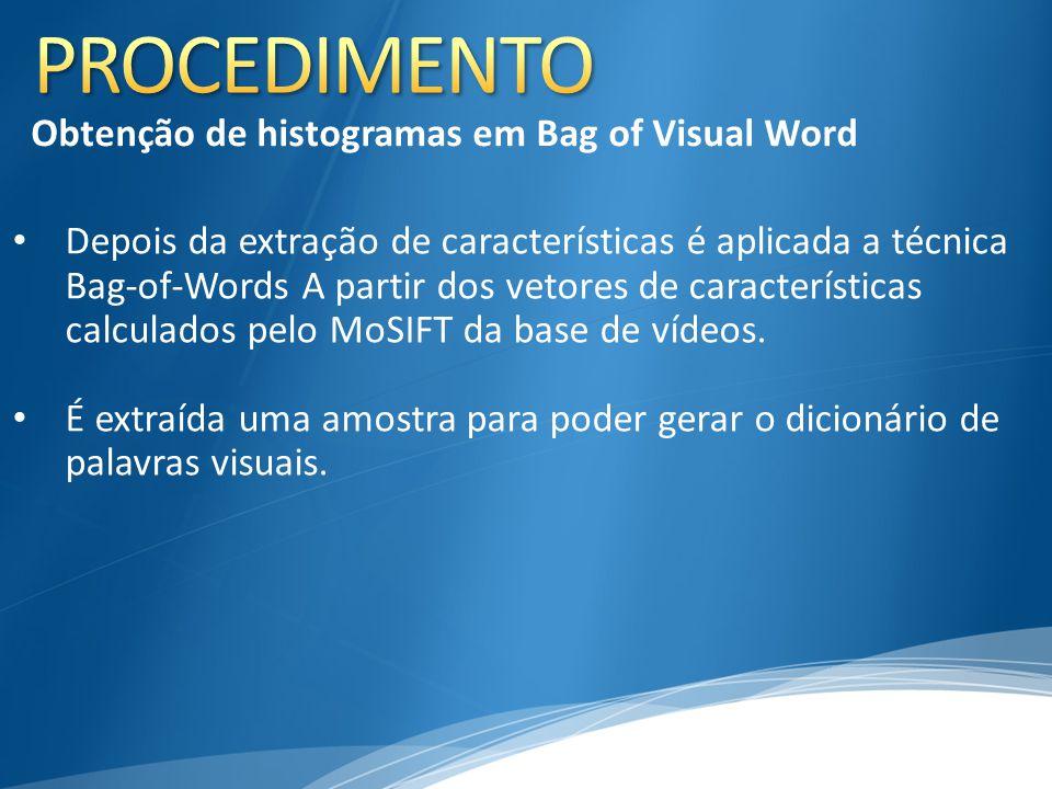 Depois da extração de características é aplicada a técnica Bag-of-Words A partir dos vetores de características calculados pelo MoSIFT da base de víde