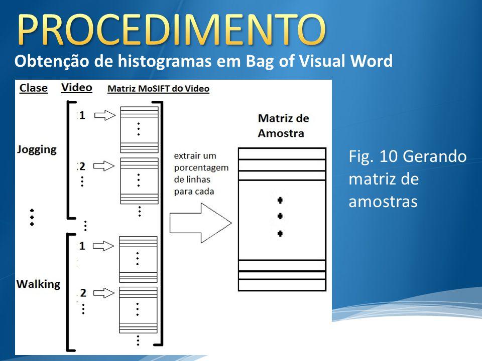 Fig. 10 Gerando matriz de amostras Obtenção de histogramas em Bag of Visual Word