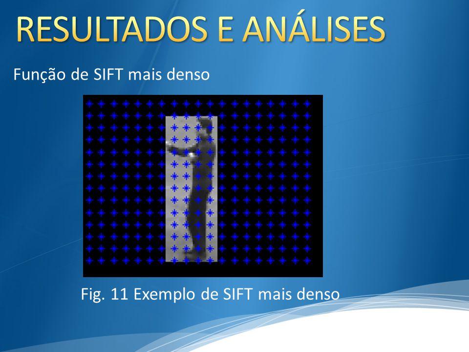 Função de SIFT mais denso Fig. 11 Exemplo de SIFT mais denso