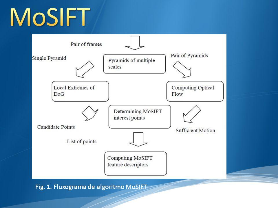 Nós mostramos que o algoritmo MoSIFT é eficiente para detectar pontos de interesse espácio-temporal de um vídeo, que pode usar no campo de detecção e reconhecimento.