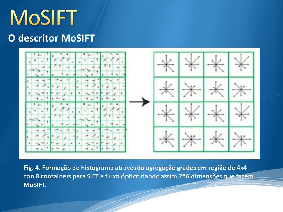 Fig. 4. Formação de histograma através da agregação grades em região de 4x4 con 8 containers para SIFT e fluxo óptico dando assim 256 dimensões que fa