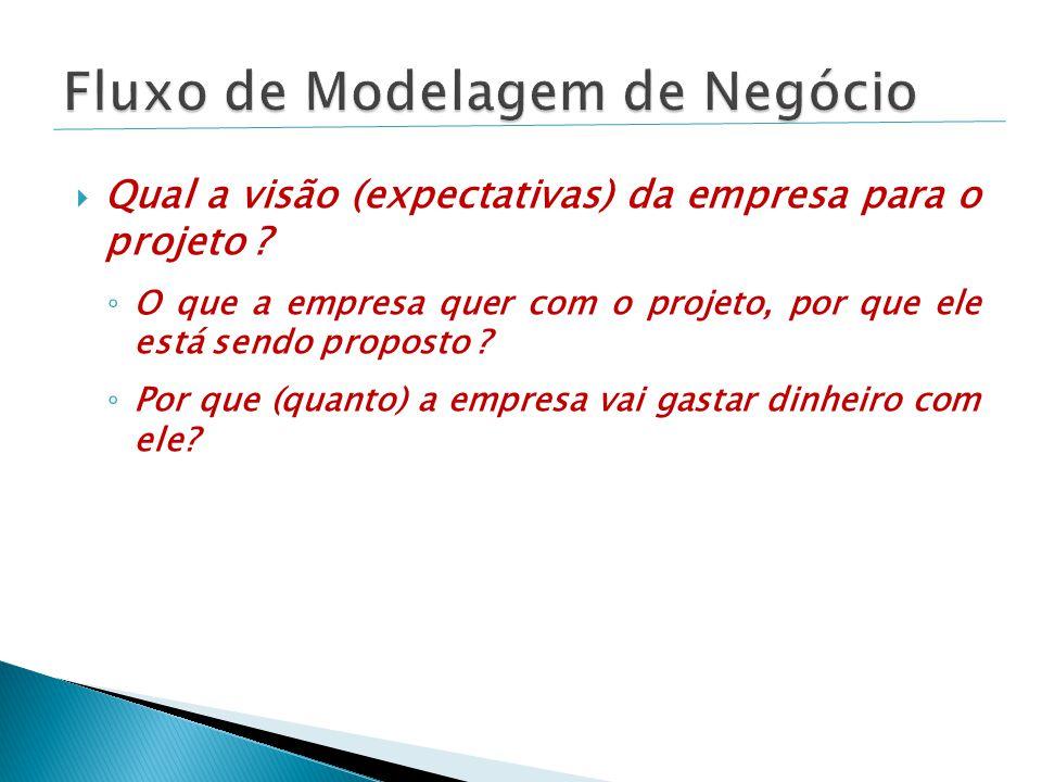  Qual a visão (expectativas) da empresa para o projeto .