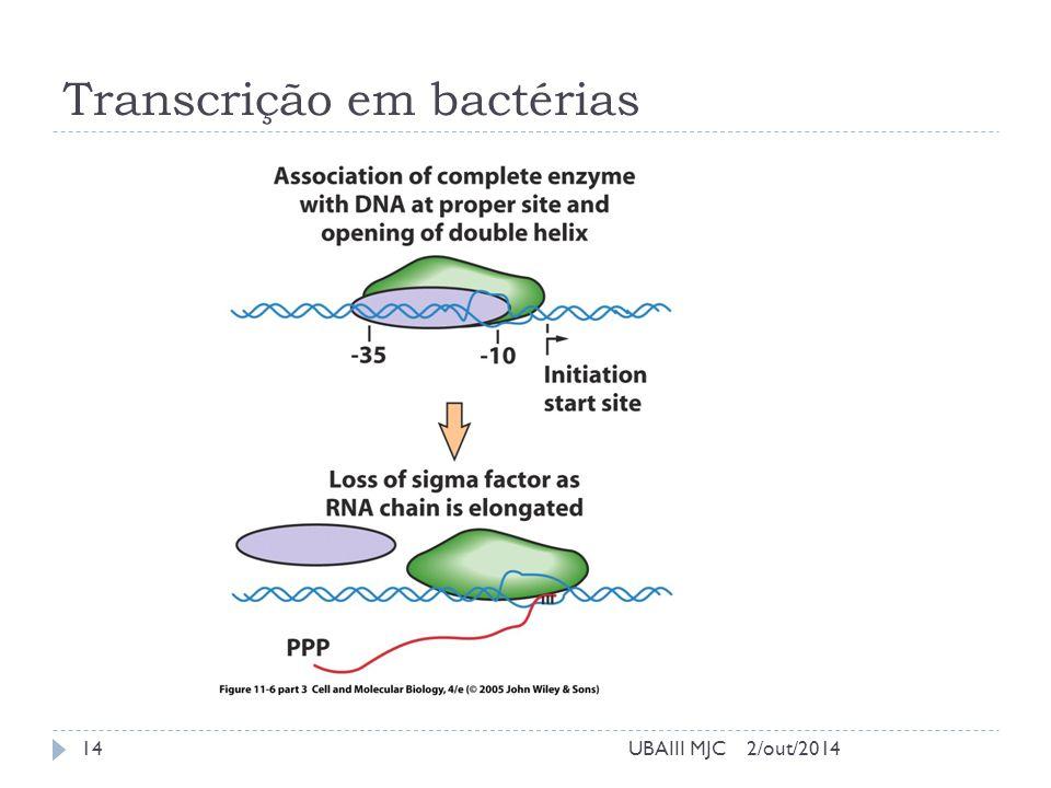 Transcrição em bactérias 2/out/2014UBAIII MJC14