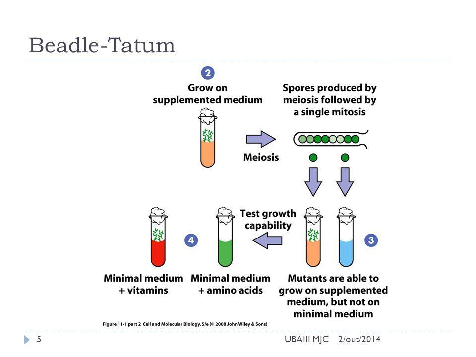 Beadle-Tatum 2/out/2014UBAIII MJC5