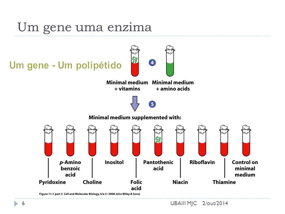 Um gene uma enzima 2/out/2014UBAIII MJC6