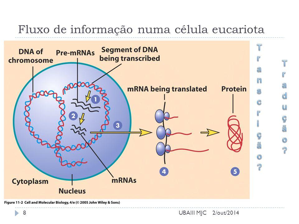 Fluxo de informação numa célula eucariota 2/out/2014UBAIII MJC8