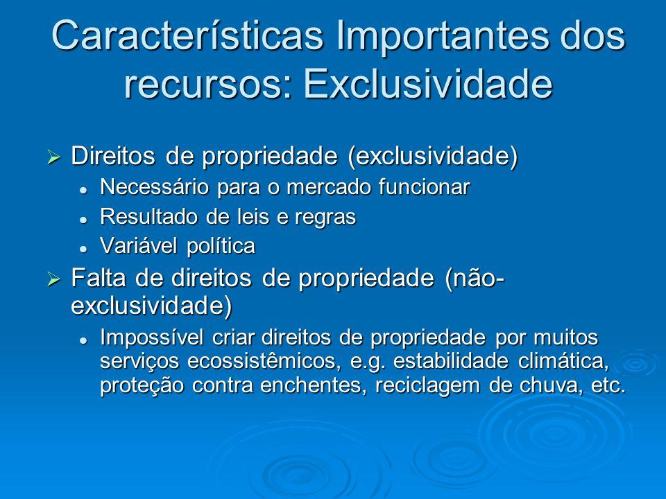 Características Importantes dos recursos: Exclusividade  Direitos de propriedade (exclusividade) Necessário para o mercado funcionar Necessário para