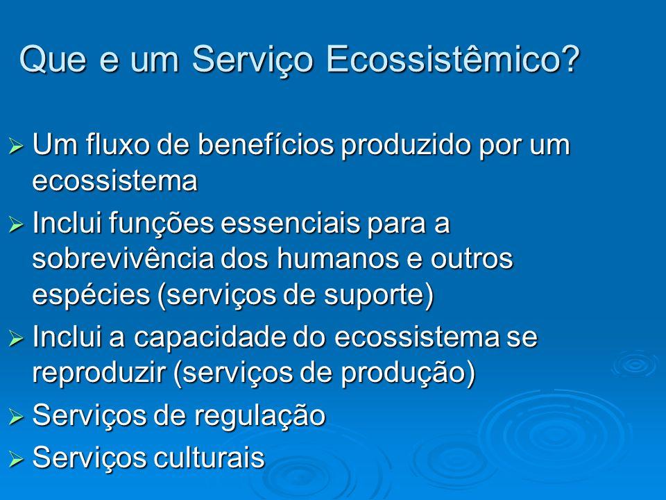 Que e um Serviço Ecossistêmico?  Um fluxo de benefícios produzido por um ecossistema  Inclui funções essenciais para a sobrevivência dos humanos e o