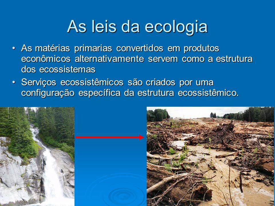 As leis da ecologia As matérias primarias convertidos em produtos econômicos alternativamente servem como a estrutura dos ecossistemasAs matérias prim