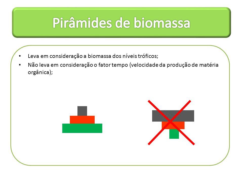 Leva em consideração a biomassa dos níveis tróficos; Não leva em consideração o fator tempo (velocidade da produção de matéria orgânica);