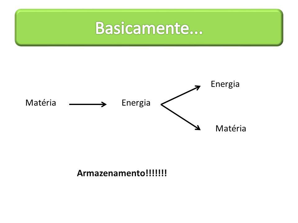 Produtividade primária brutal: é o total produzido por um organismo fotossintetizante por unidade de área por tempo.