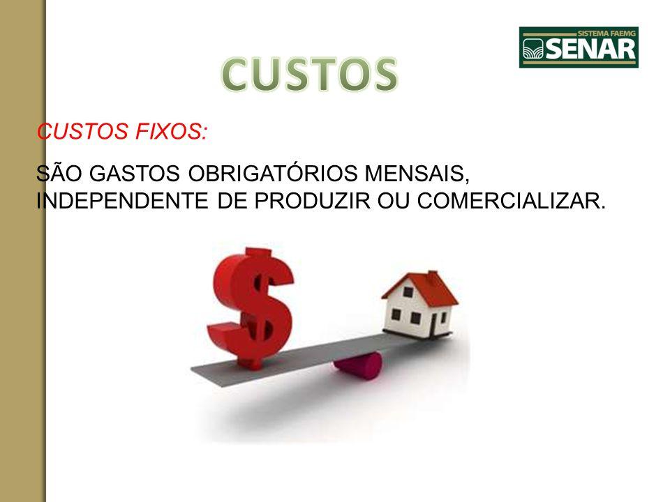 CUSTOS FIXOS: SÃO GASTOS OBRIGATÓRIOS MENSAIS, INDEPENDENTE DE PRODUZIR OU COMERCIALIZAR.