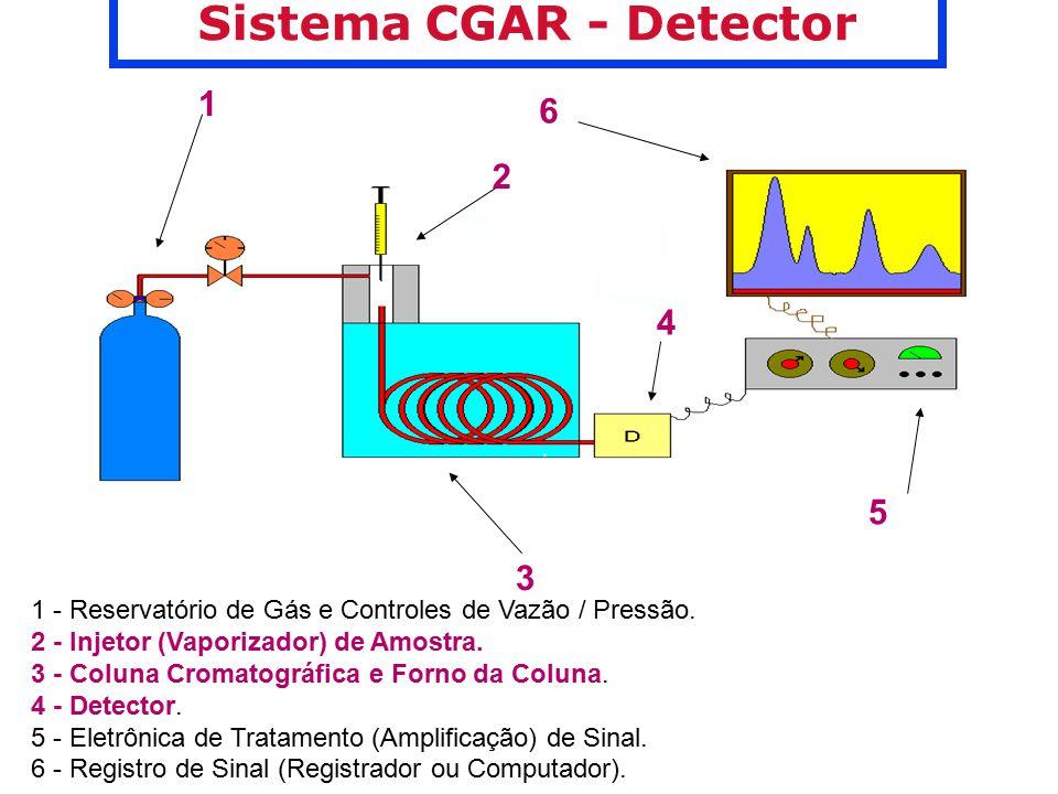 Sistema CGAR - Detector 1 2 3 4 6 5 1 - Reservatório de Gás e Controles de Vazão / Pressão. 2 - Injetor (Vaporizador) de Amostra. 3 - Coluna Cromatogr