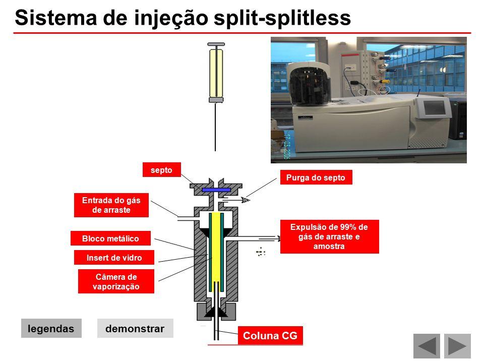 Sistema de injeção split-splitless demonstrar Purga do septo septo Câmera de vaporização Entrada do gás de arraste Expulsão de 99% de gás de arraste e amostra Insert de vidro Bloco metálico legendas Coluna CG