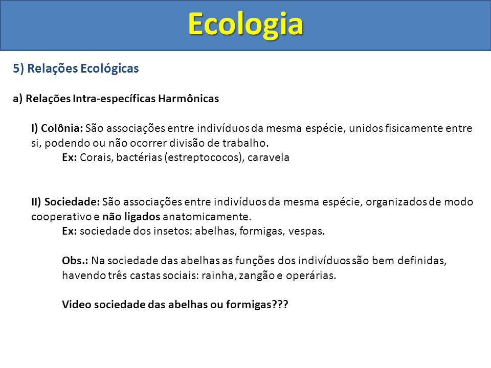 5) Relações Ecológicas a) Relações Intra-específicas Harmônicas I) Colônia: São associações entre indivíduos da mesma espécie, unidos fisicamente entr