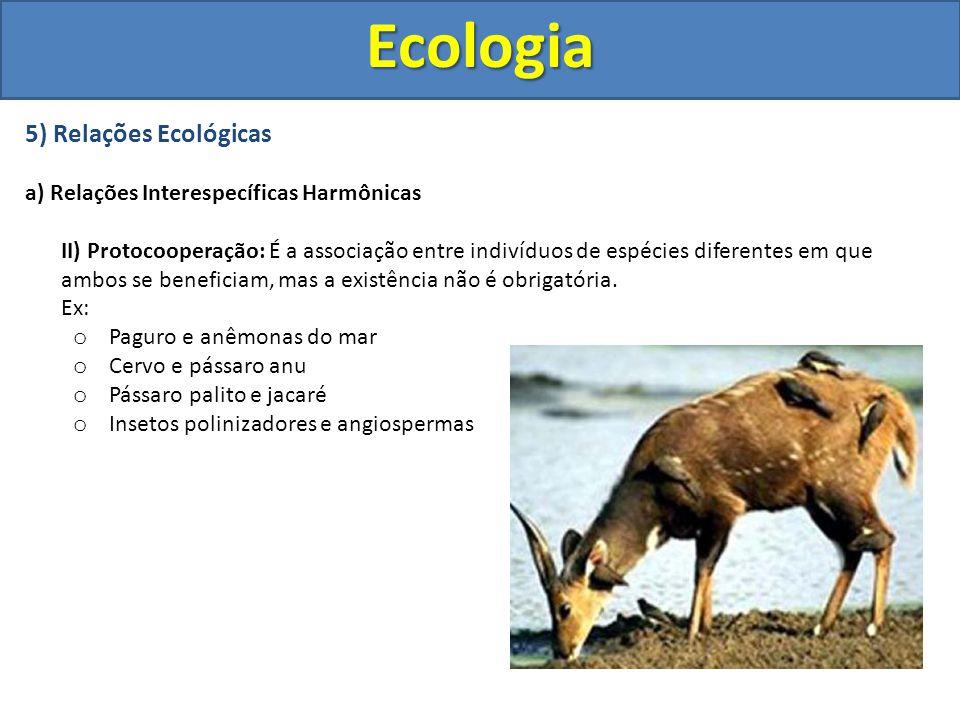 5) Relações Ecológicas a) Relações Interespecíficas Harmônicas II) Protocooperação: É a associação entre indivíduos de espécies diferentes em que ambo