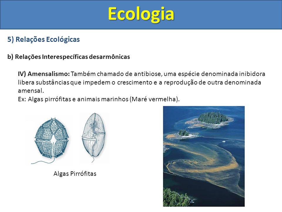 5) Relações Ecológicas b) Relações Interespecíficas desarmônicas IV) Amensalismo: Também chamado de antibiose, uma espécie denominada inibidora libera