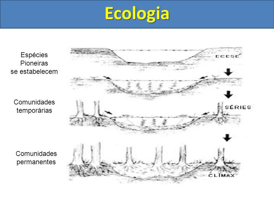 Ecologia Espécies Pioneiras se estabelecem Comunidades temporárias Comunidades permanentes