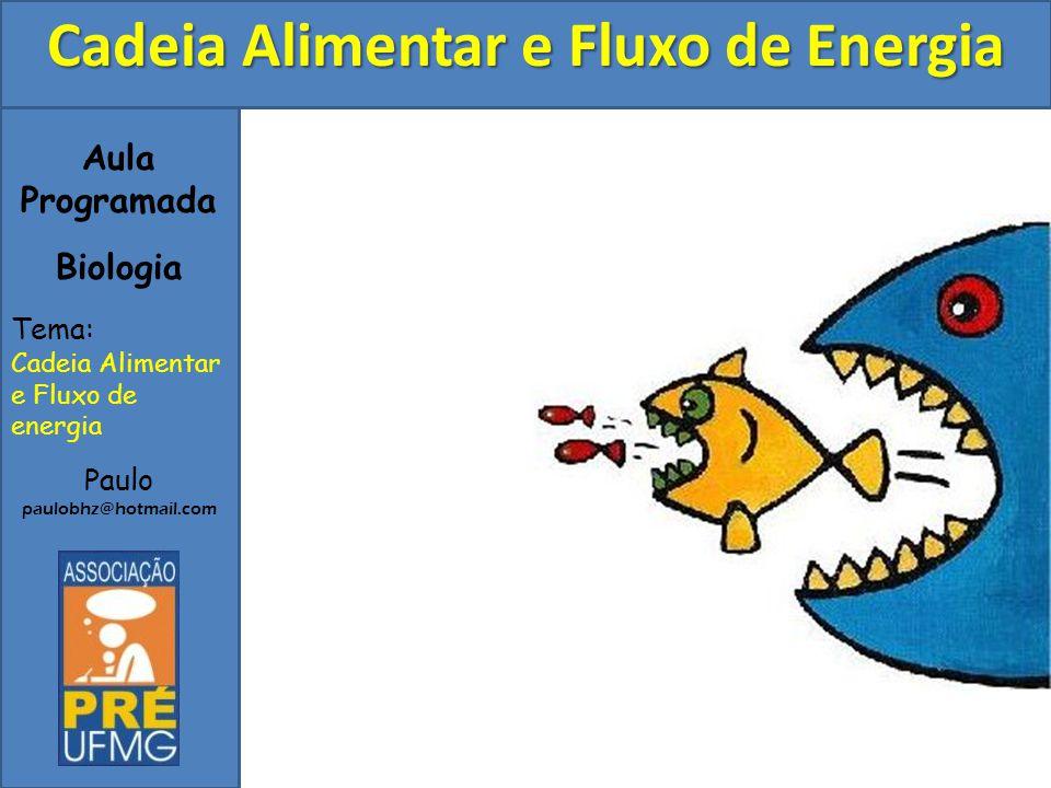 Aula Programada Biologia Tema: Cadeia Alimentar e Fluxo de energia Paulo paulobhz@hotmail.com Cadeia Alimentar e Fluxo de Energia