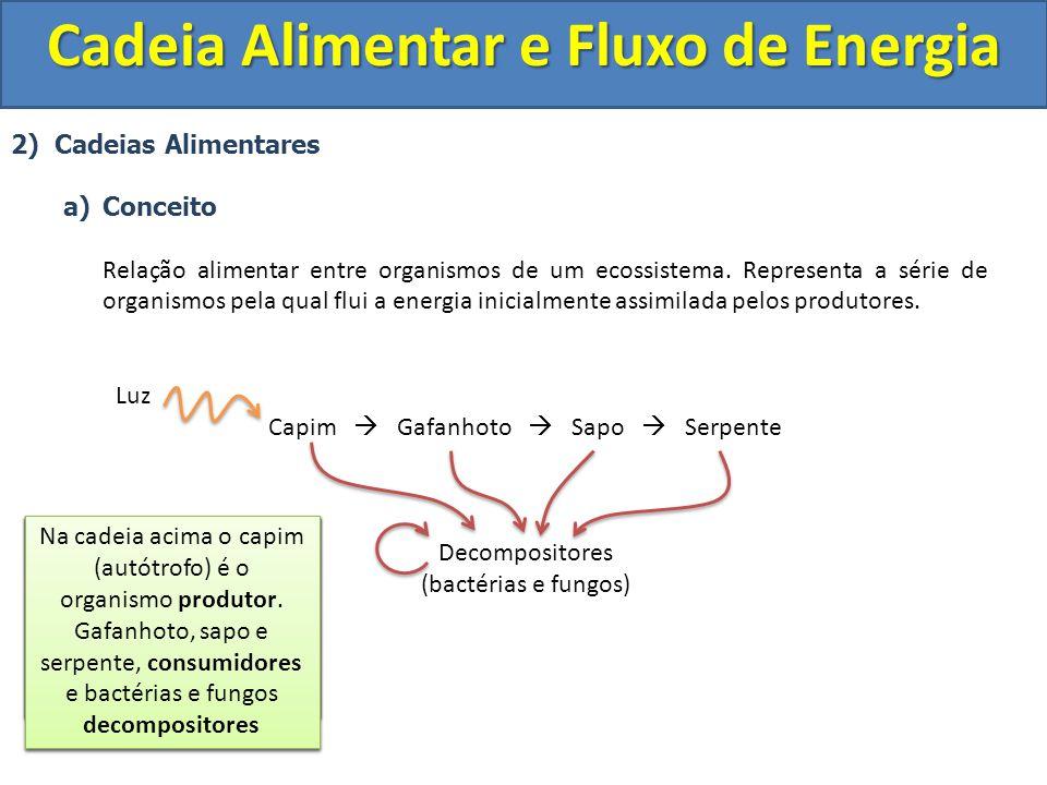 2) Cadeias Alimentares a)Conceito Relação alimentar entre organismos de um ecossistema. Representa a série de organismos pela qual flui a energia inic