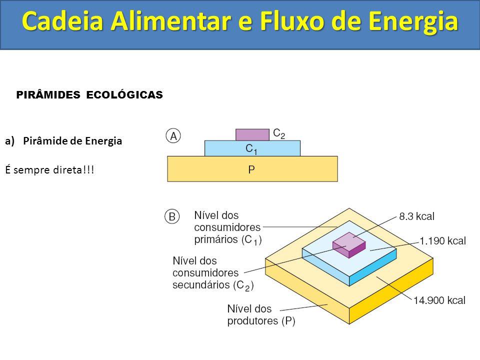 PIRÂMIDES ECOLÓGICAS a)Pirâmide de Energia É sempre direta!!!