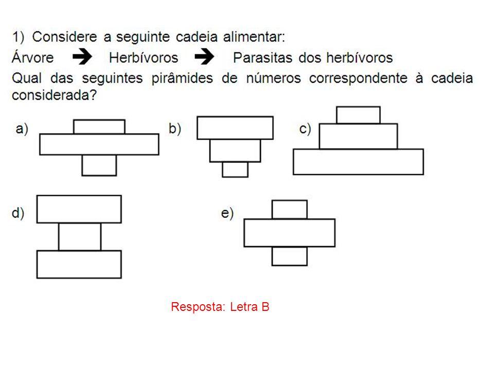 Resposta: Letra B