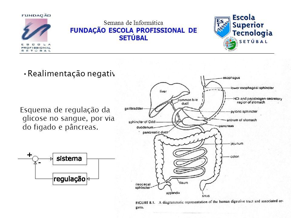 Conceitos Semana de Informática FUNDAÇÃO ESCOLA PROFISSIONAL DE SETÚBAL Realimentação negativa Esquema de regulação da glicose no sangue, por via do figado e pâncreas.