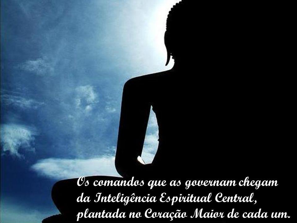 Os comandos que as governam chegam da Inteligência Espiritual Central, plantada no Coração Maior de cada um.