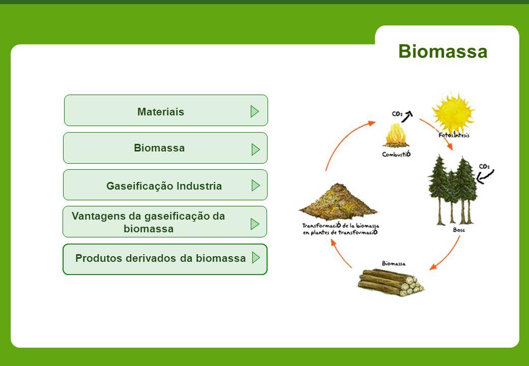 Biomassa Vantagens da gaseificação da biomassa Gaseificação Industria Biomassa Produtos derivados da biomassa Materiais