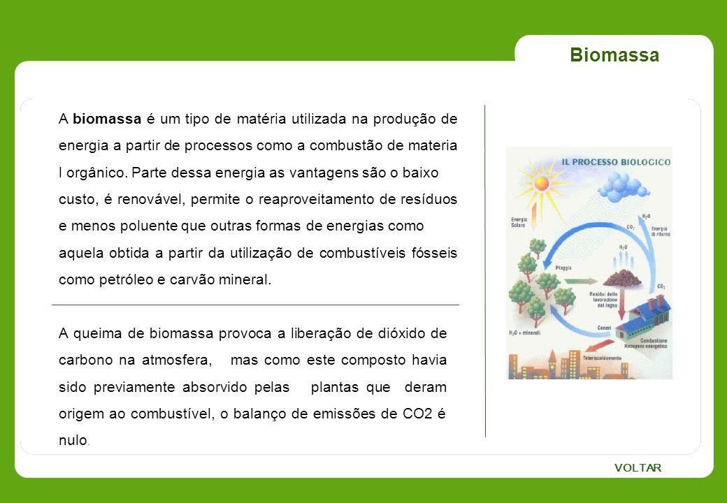 Biomassa A biomassa é um tipo de matéria utilizada na produção de energia a partir de processos como a combustão de materia l orgânico. Parte dessa en