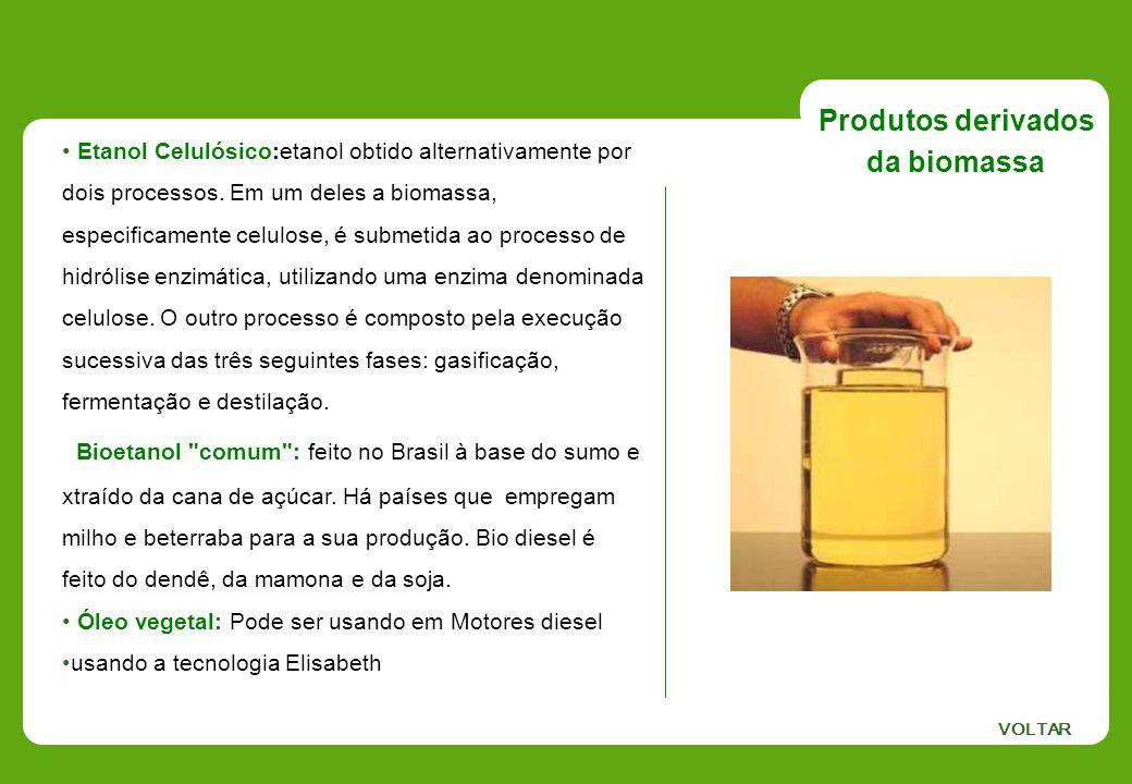 Etanol Celulósico:etanol obtido alternativamente por dois processos. Em um deles a biomassa, especificamente celulose, é submetida ao processo de hidr