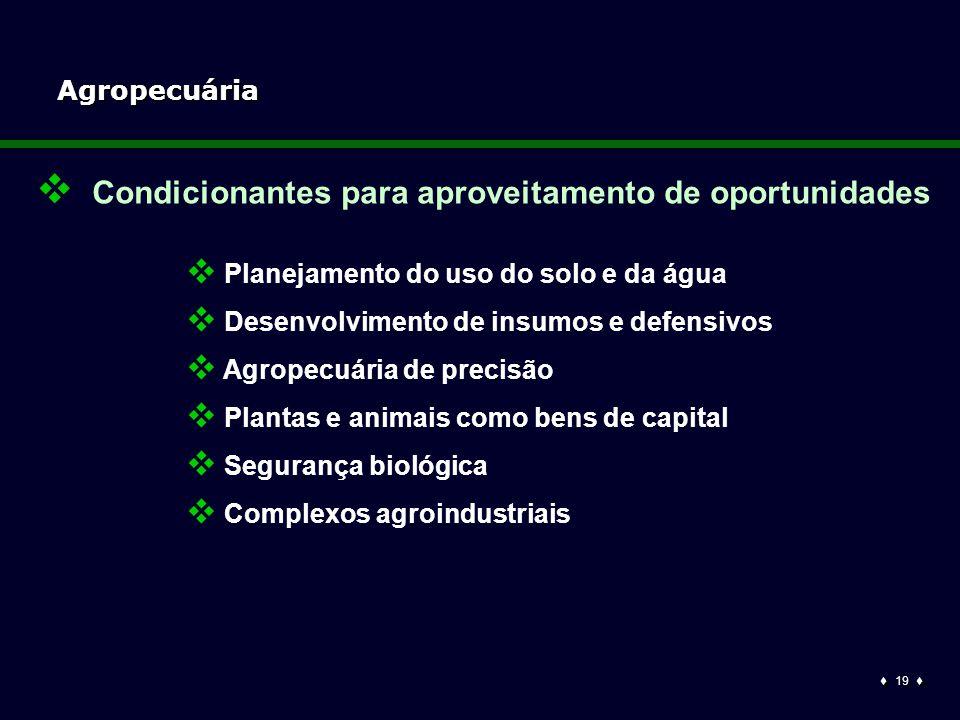  19  Agropecuária  Planejamento do uso do solo e da água  Desenvolvimento de insumos e defensivos  Agropecuária de precisão  Plantas e animais como bens de capital  Segurança biológica  Complexos agroindustriais  Condicionantes para aproveitamento de oportunidades