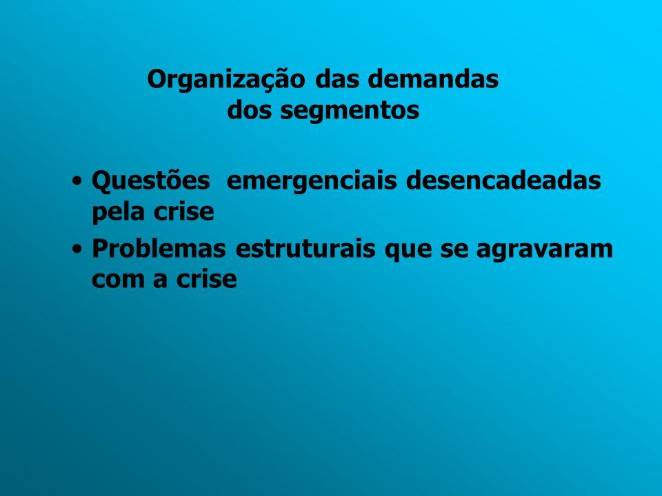 Organização das demandas dos segmentos Questões emergenciais desencadeadas pela crise Problemas estruturais que se agravaram com a crise