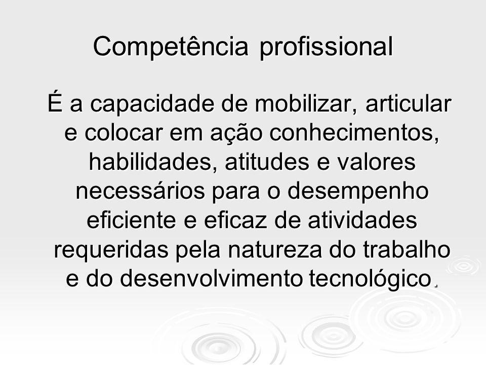 Competência A constatação da competência na academia pressupõe um conjunto de critérios referenciados no perfil do aluno que se quer formar, descrito no projeto pedagógico do curso.