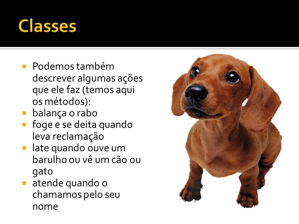  Representação do cachorro Bilú:  Propriedades : [Cor do corpo : castanha; cor dos olhos : pretos; altura: 15 cm; comprimento: 38 cm largura : 24 cm]  Métodos : [balançar o rabo, latir, correr, deitar, sentar ]
