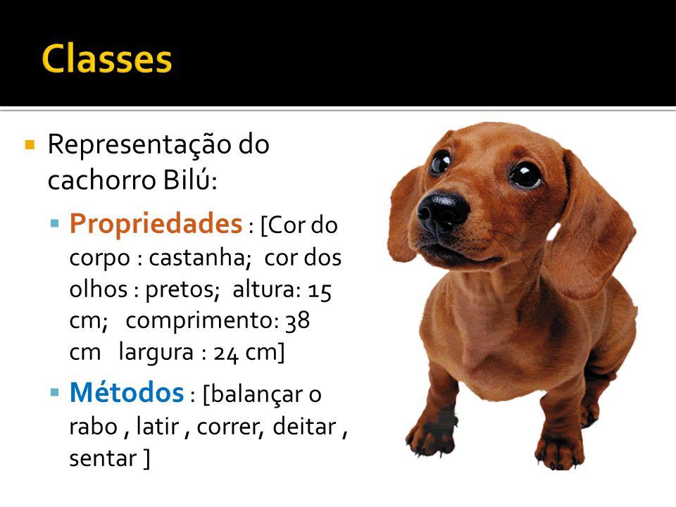  Representação do cachorro Bilú:  Propriedades : [Cor do corpo : castanha; cor dos olhos : pretos; altura: 15 cm; comprimento: 38 cm largura : 24 cm