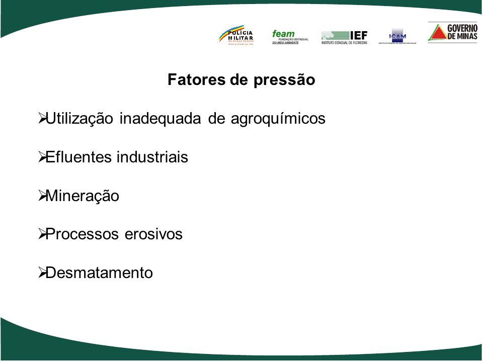 Fatores de pressão  Utilização inadequada de agroquímicos  Efluentes industriais  Mineração  Processos erosivos  Desmatamento