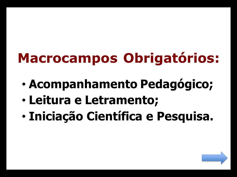 Acompanhamento Pedagógico; Leitura e Letramento; Iniciação Científica e Pesquisa.