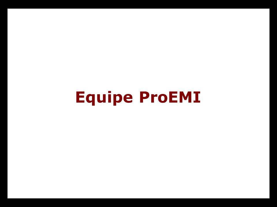 Equipe ProEMI
