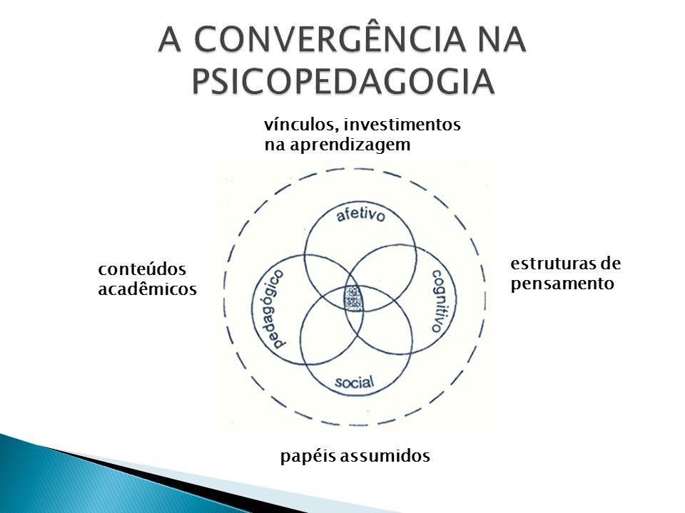 vínculos, investimentos na aprendizagem conteúdos acadêmicos estruturas de pensamento papéis assumidos