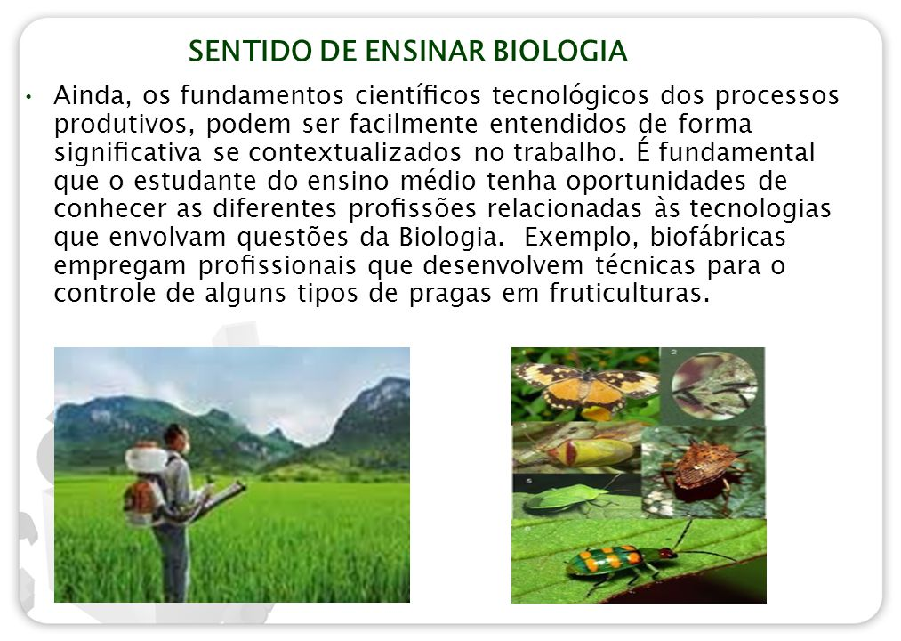 SENTIDO DE ENSINAR BIOLOGIA Ainda, os fundamentos científicos tecnológicos dos processos produtivos, podem ser facilmente entendidos de forma significat