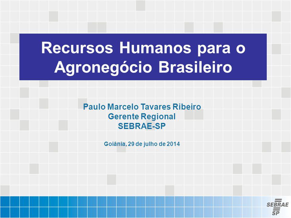 Recursos Humanos para o Agronegócio Brasileiro Paulo Marcelo Tavares Ribeiro Gerente Regional SEBRAE-SP Goiânia, 29 de julho de 2014