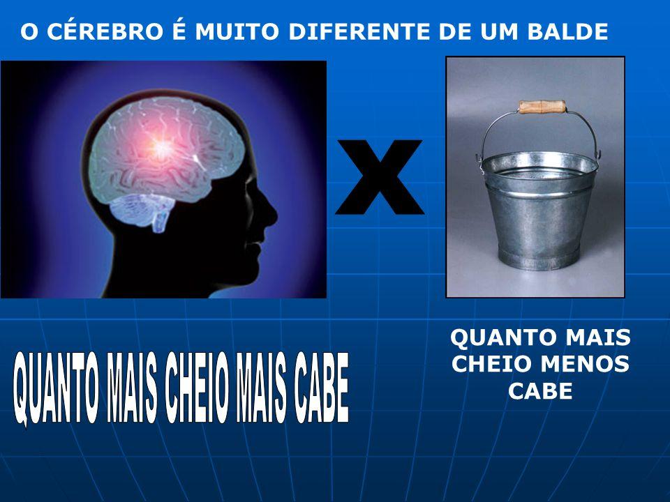 O CÉREBRO É MUITO DIFERENTE DE UM BALDE QUANTO MAIS CHEIO MENOS CABE